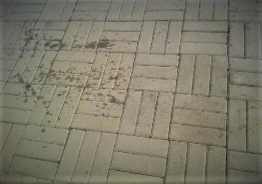 chem smyt mashinnoe maslo s trotuarnoj plitki