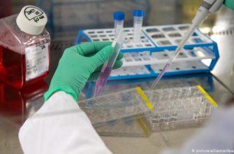pervye 2000 rossiyan sdali test na kollektivnyj immunitet ot covid 19