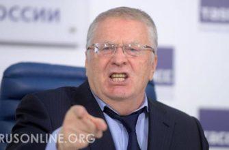 zhirinovskij dal prognoz po sudbe mihaila efremova zhirinovskij dal prognoz po sudbe mihaila efremova
